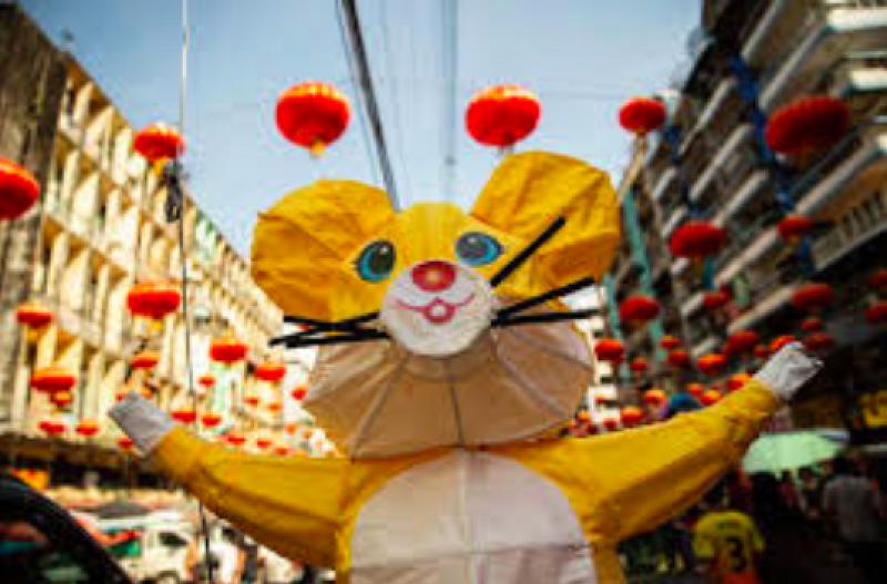 Happy Year of the Rat! [Photo Credit: nydailynews.com]